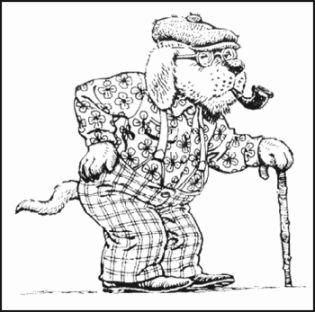 old dogdog