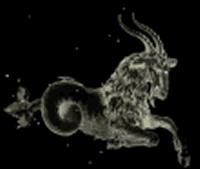 capricorn goat xray