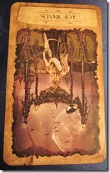Dixie's Daily Tarot, October 8, 2010: Transitional Foundations