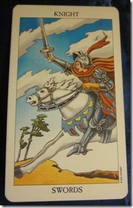Dixie's Daily Tarot, November 20, 2010: To Meddle or Not?
