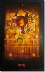 Dixie Daily Tarot, November 13, 2010: Winning at All Costs?