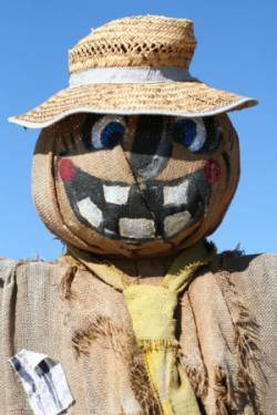scarecrow scared