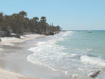 high_tide_beach6377
