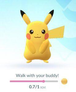 buddy pokemon