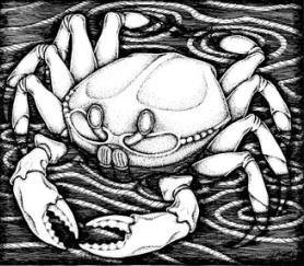 cancer crab line drawing