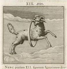 aries ram vintage drawing