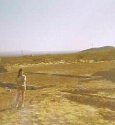 elsa in desert