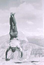 climbhandspring