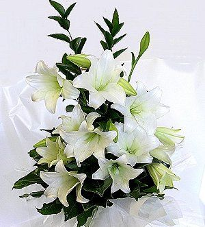 funeral lilies