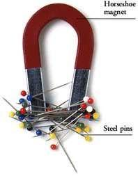 horseshoe magnet and pins