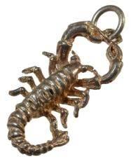 scorpioocharm