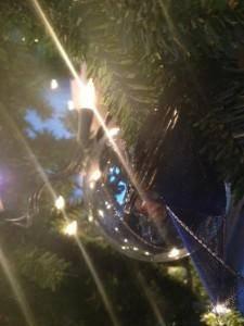 lens flare tree light