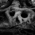 Roots That Come Back to Haunt You (Literally)