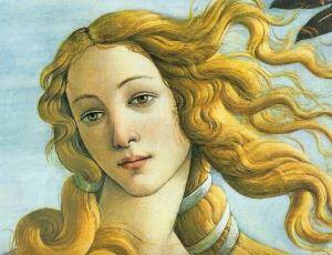 Venus beauty