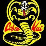 Cobra Kai is an Aries/Libra Masterpiece