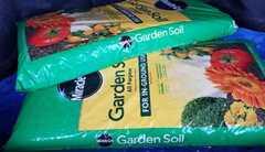 garden 2021
